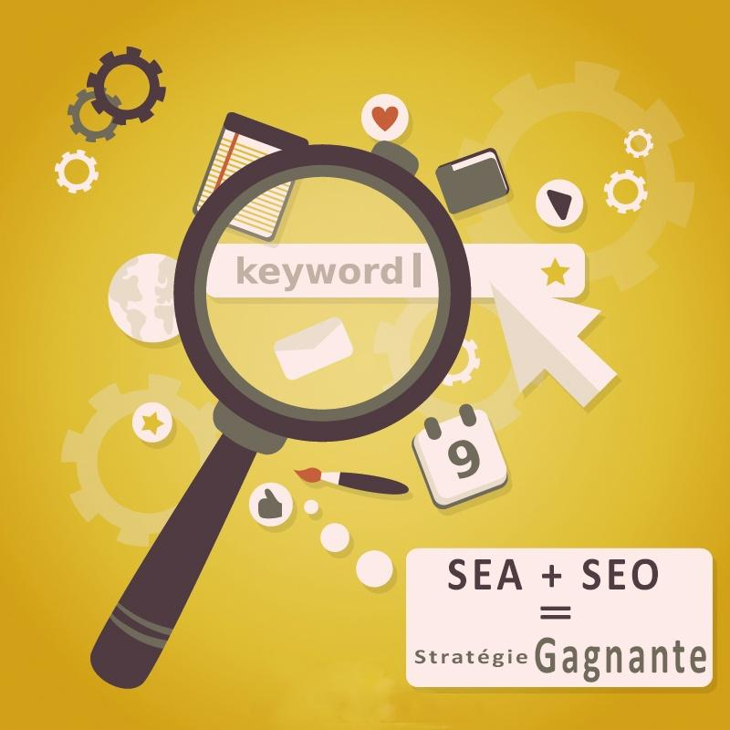 Marketing digital: Seo ou Google Adwords ?