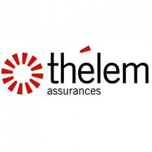 Gestion de campagnes Adwords pour thelem