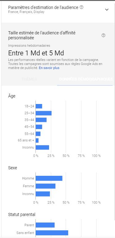 Audiences Google Ads par affinités